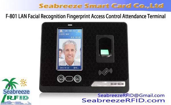 F-801 LAN Facial Recognition Fingerprint Access Control Attendance Terminal