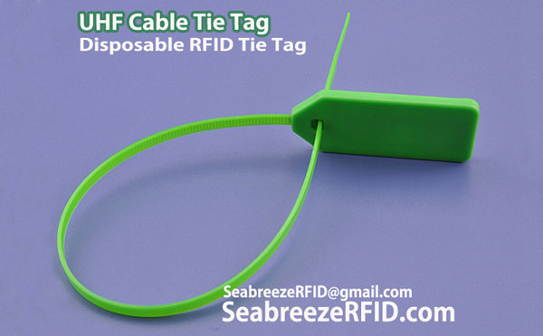 Disposable RFID Tie Tag, Bandet Cable Tie Tag