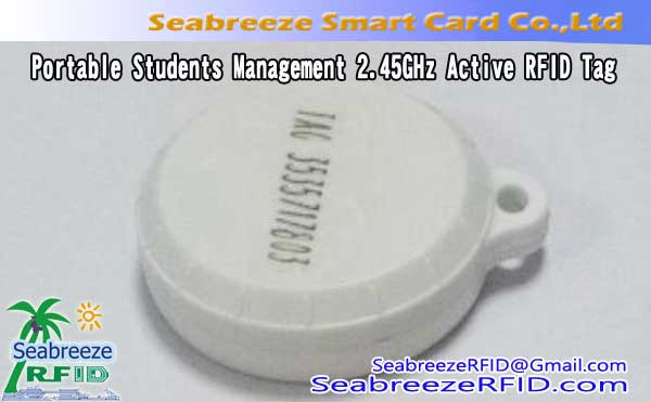 Portable Mmụta Management 2.45GHz Active RFID Tag