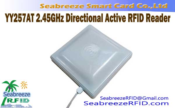 YY257AT 2.45GHz Directional Pembaca RFID Aktif