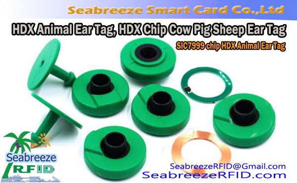 RFID HDX Animal Ear Tag, SIC7999 Chip HDX Animal Ear Tag, HDX Chip Cow Pig Sheep Ear Tag