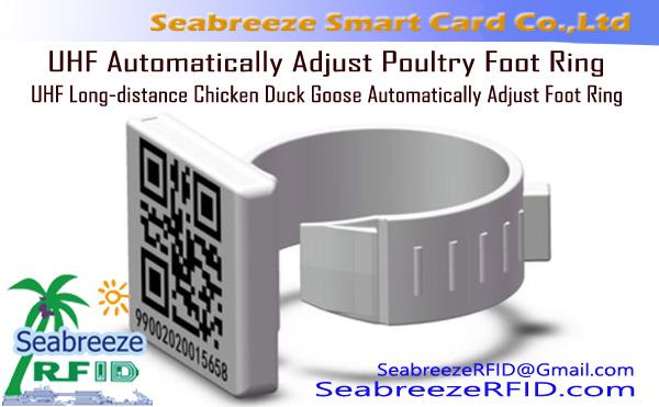 UHF regola automaticamente l'anello del piede del pollame, UHF Chicken Duck Goose Regola automaticamente l'anello del piede